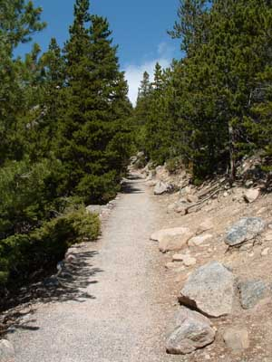Photo of hiking trail