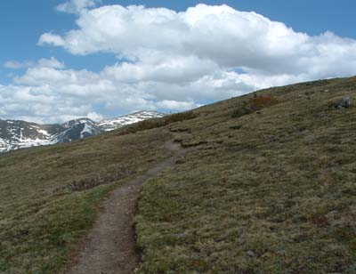 Photo of Alpine Ridge Trail