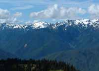 Photo of Hurricane Ridge Trail Vista