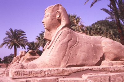 Photo of statue in front of Luxor Temple