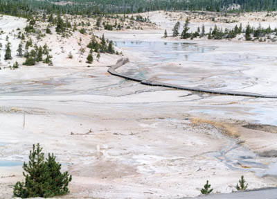 photo overview of a boardwalk path at Mammoth Hot Spring