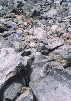 Photo of rocks on Cascade Canyon Trail