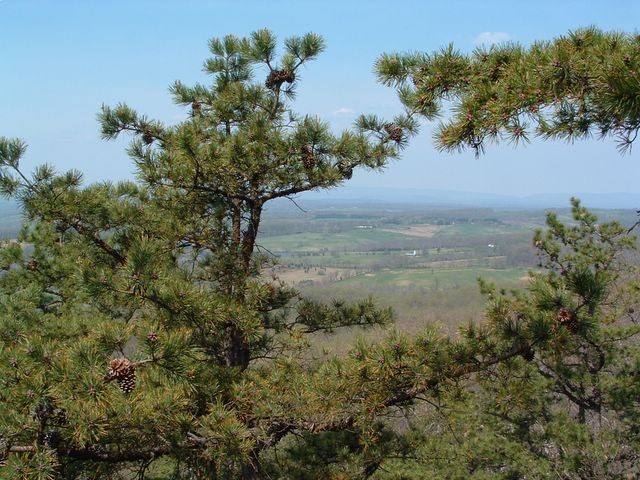 photo of vista, Bull Run Mountain Conservancy Trail