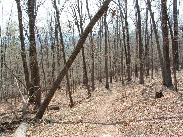 photo of Bull Run Mountain Conservancy Trail