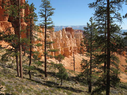 photo of Bryce National Park