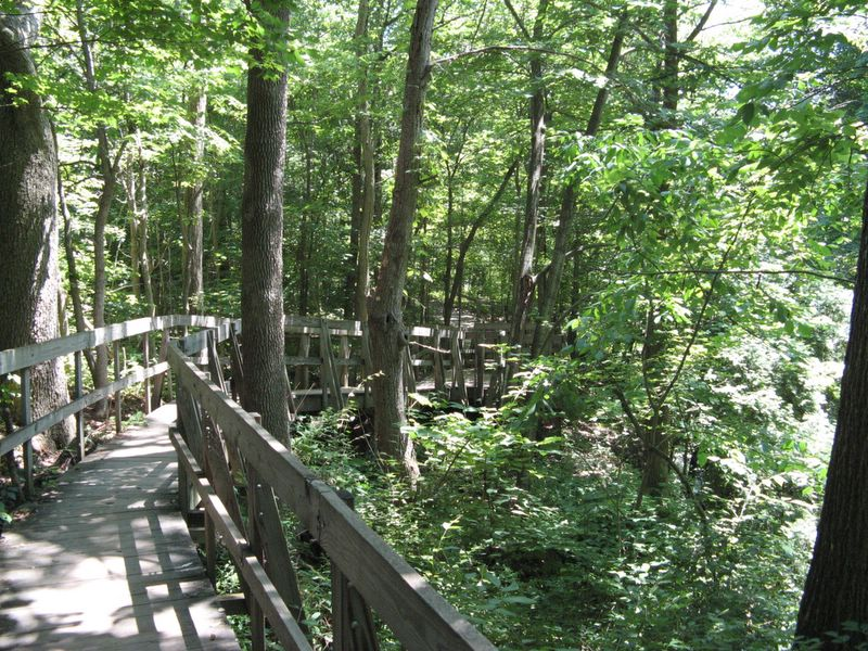 Clifton Gorge State Nature Preserve