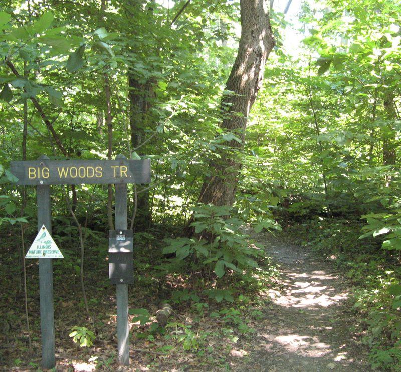 Rocky Glen Park Home: Forest Glen Preserve, Illinois